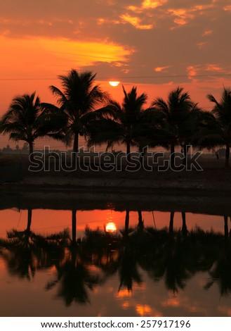 reflections - stock photo
