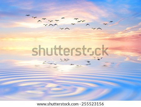 reflections in the blue sea - stock photo