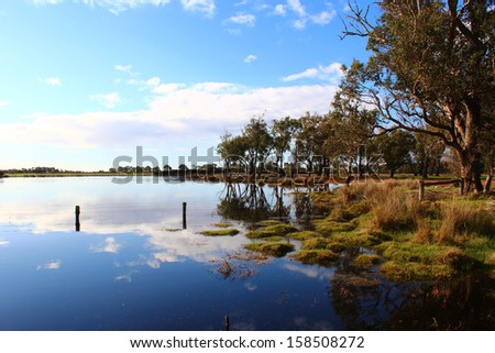 Reflections in the lake at the  Malbup Bird hide  in the  Tuart forest National park near Busselton south west Australia  on a cloudy afternoon after heavy spring rains .