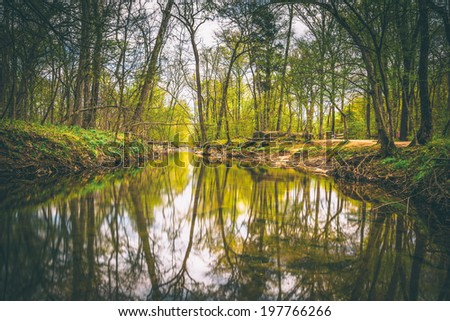 Reflections in the Patowmack Canal at Great Falls Park, Virginia. - stock photo