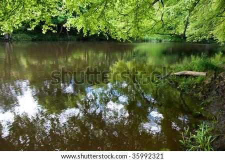 reflections of abundant vegetation over the river don, aberdeen, scotland. - stock photo