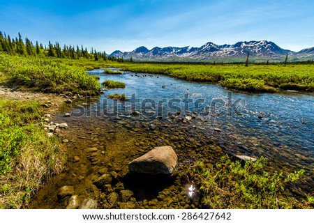 Reflections on a creek off Denali Highway in Alaska. - stock photo