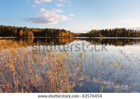 Reflections on the autumnal tranquil lake