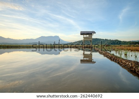 Refletion old hut in paddy field, and background mount kinabalu at Sabah, Borneo, Malaysia.(Shallow DOF, slight motion blur) - stock photo