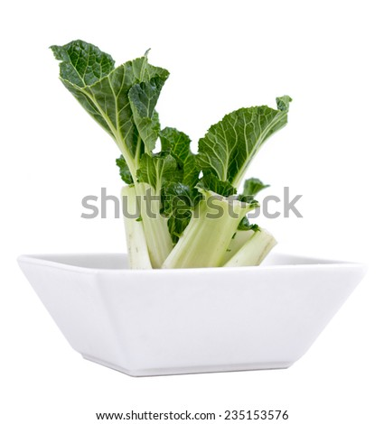 regrow bok choy technique in bowl isolated over white - stock photo
