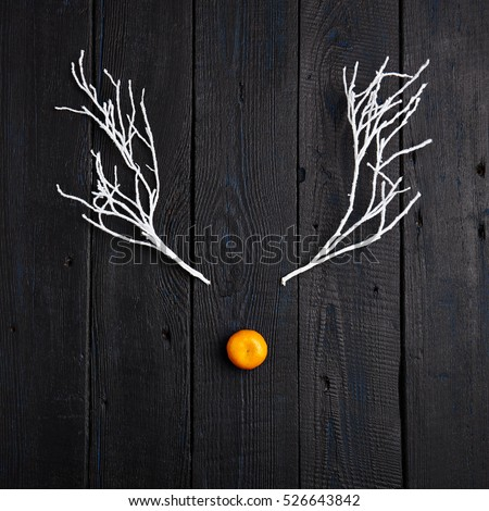 Reindeer Face made of Tangerine and Winter Branches. Minimal Christmas Concept. Flat Lay.