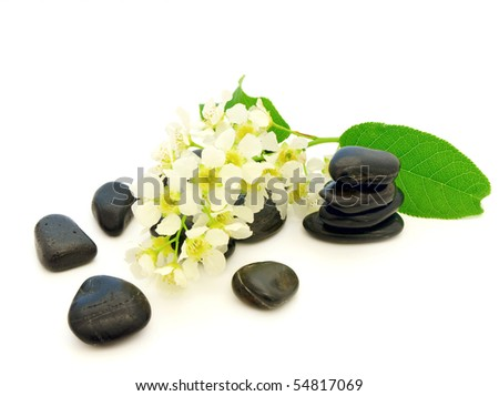 Relax theme with Zen stones and herb over white background - stock photo