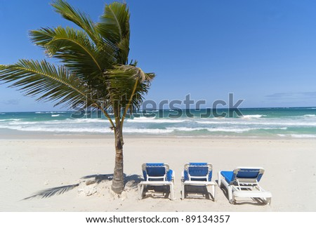 Relax under palm-tree on the dominican beach