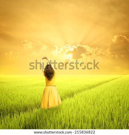 Relax Woman in green rice fields and sunset