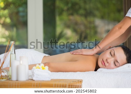 Relaxed brunette getting a back massage at the spa - stock photo