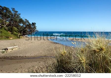 Relaxing beach scene at Kings Beach, Whananaki North, Northland, New Zealand - stock photo