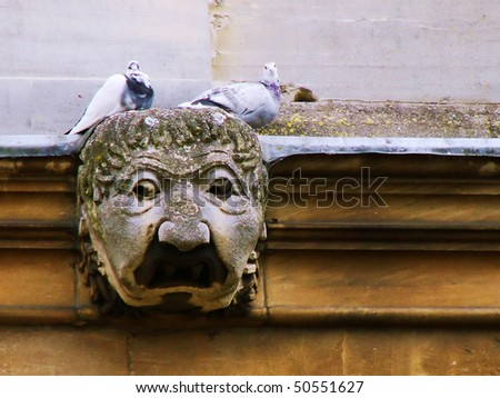 Relaxing on top of statue from Oldest Oxford Library - stock photo