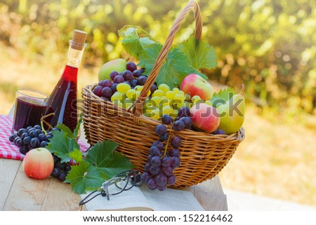 Relaxing with red wine, fruit and book - stock photo