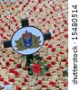 Remembrance day on 11th November in London, United Kingdom - stock photo