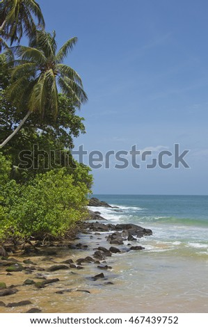 Remote and quiet paradise Indian Ocean tropical beach in south Sri Lanka near Matara with coconut palm trees, coral sand, warm water and blue skies popular with surfers and adventure tourists