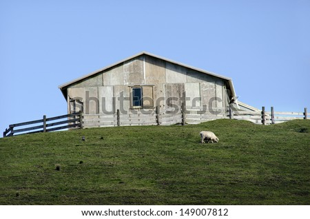 Remote hill sheep farm station in New Zealand. - stock photo