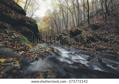 remote river in colorful forest - stock photo