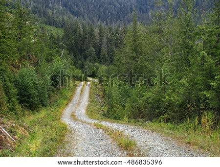 Remote road on the Prince of Wales Island, Alaska