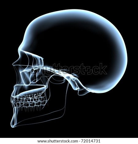 rendered bluish x-ray image of a human skull - side projection - stock photo