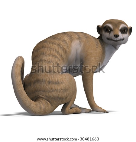rendering of a meerkat with Clipping Path over white