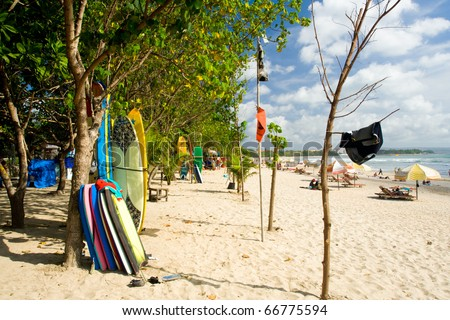 Rental surfboards and bodyboards are available for rent and lessons to tourists laid out  against trees on Kuta Beach in Bali, Indonesia