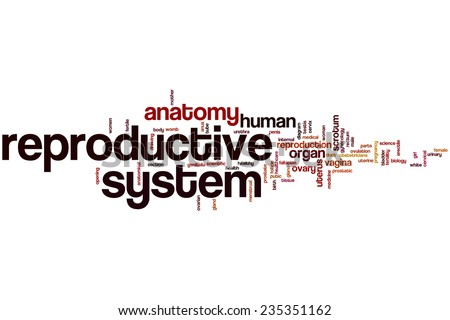 Reproductive system word cloud concept - stock photo