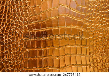 reptile skin - design texture pattern background crocodile snake serpent alligator closeup - stock photo