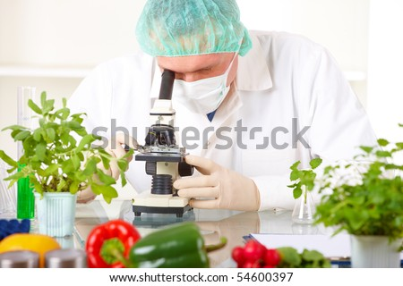 Researcher with microscope with a GMO vegetables. Genetically modified organism or GEO here transgenic plant is an plant whose genetic material has been altered using genetic engineering techniques - stock photo