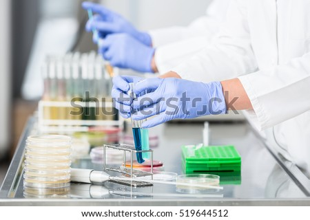 Researchers preparing samples for experiments in laboratory