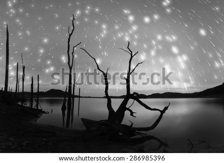 Reservoir starry night black and white tone. - stock photo