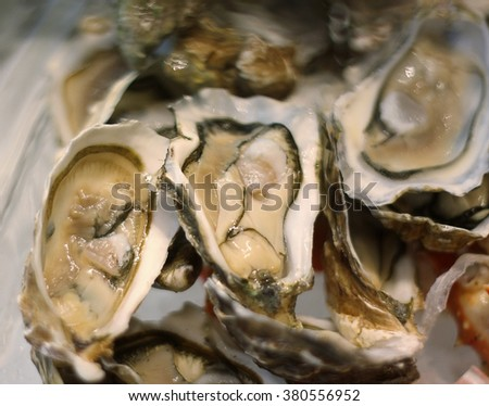resh oysters on ice, selective focus, shallow DOF. - stock photo
