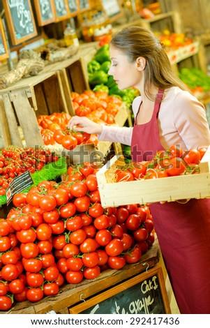 Restocking tomatoes - stock photo