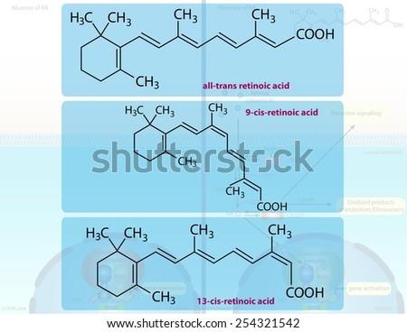 Retinoic acid forms - stock photo
