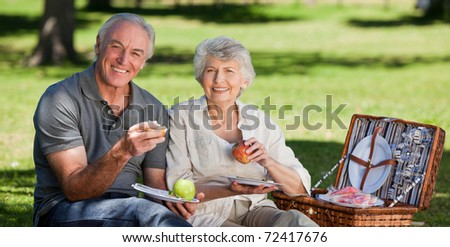 Retired couple  picnicking in the garden - stock photo