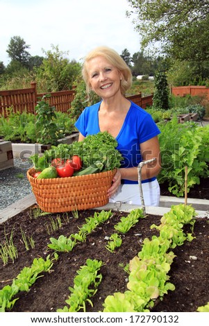 Retired woman in the vegetable garden holding a basket of freshly picked lettuce and tomatoes. Also available in horizontal.