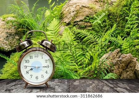 retro alarm clock on wooden table with bracken of mountain  - stock photo
