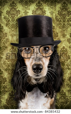 Retro dog with stove pipe hat and glasses - stock photo