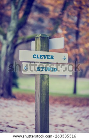 Retro style image of a signpost in a park or forested area with arrows pointing two opposite directions towards Clever and Stupid. - stock photo