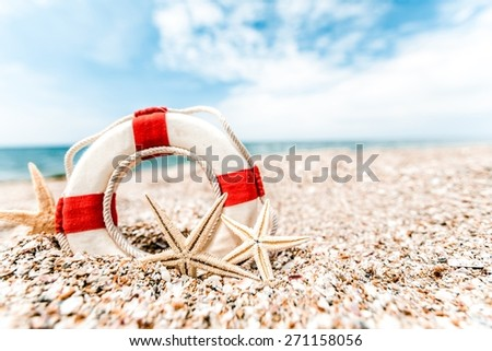 Retro, sunlight, mollusk. - stock photo