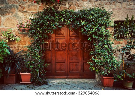 Retro wooden door outside old Italian house in a small town of Pienza, Italy. Plants decorations, ivy, vintage - stock photo