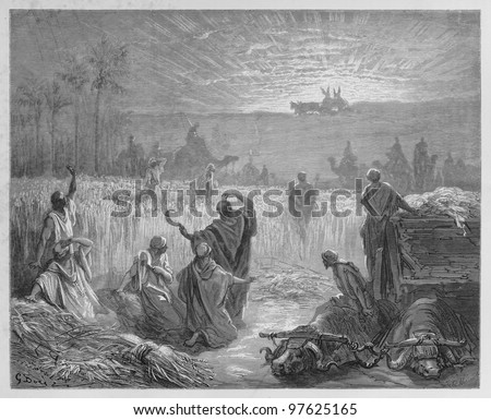 Return of the Ark - Picture from The Holy Scriptures, Old and New Testaments books collection published in 1885, Stuttgart-Germany. Drawings by Gustave Dore. - stock photo