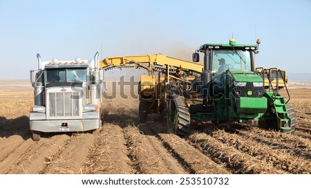 Rexburg, Idaho, USA Oct. 9, 2012- Farmers and field hands use farm machinery in the field harvesting potatoes.   - stock photo