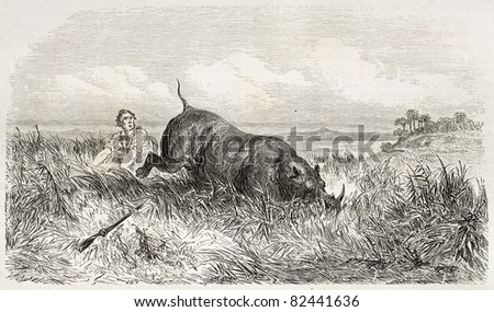 Rhinoceros and hunter in the savannah, old illustration. Created by Dore after Anderson, published on Le Tour du Monde, Paris, 1860