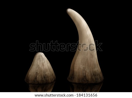 Rhinoceros horn sold on the black market for use in traditional Chinese medicine - stock photo