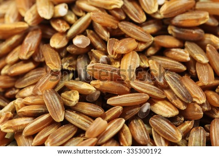rice bran shell abstract background