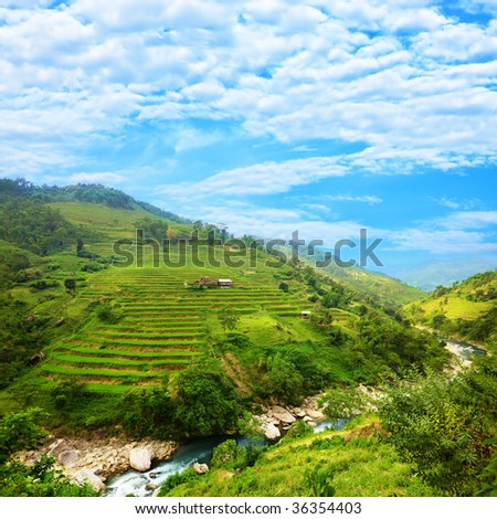 Rice field terraces at northern Vietnam - stock photo