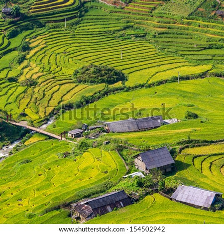 Rice field terraces at Sapa Vietnam  - stock photo