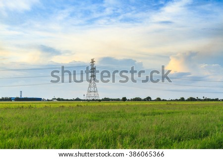 Rice field with electric tower, Thailand.