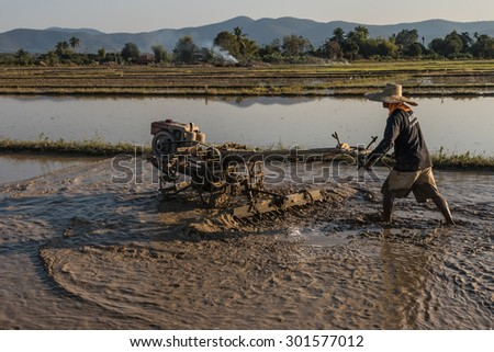 Rice fields being ploughed - stock photo