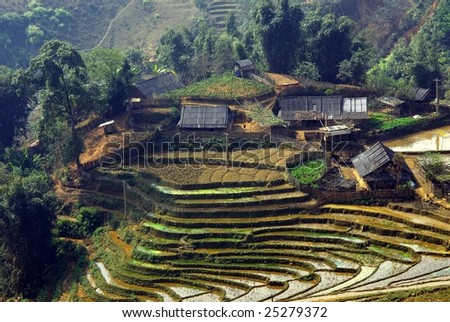 Rice fields in the mountains near Sapa in Vietnam - stock photo